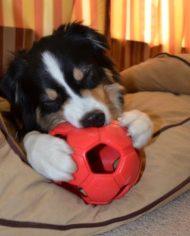 Turbo-Kick-Soccer-Ball-Blauw2