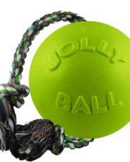 Jolly Pets Romp-n-Roll -GRÖN-
